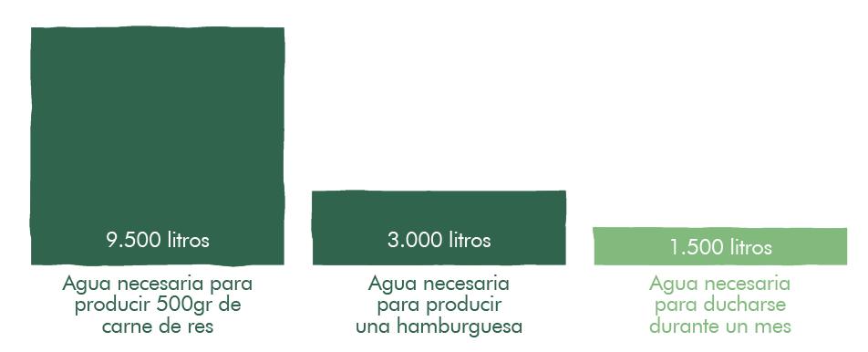 gráfico uso del agua en producción de carne