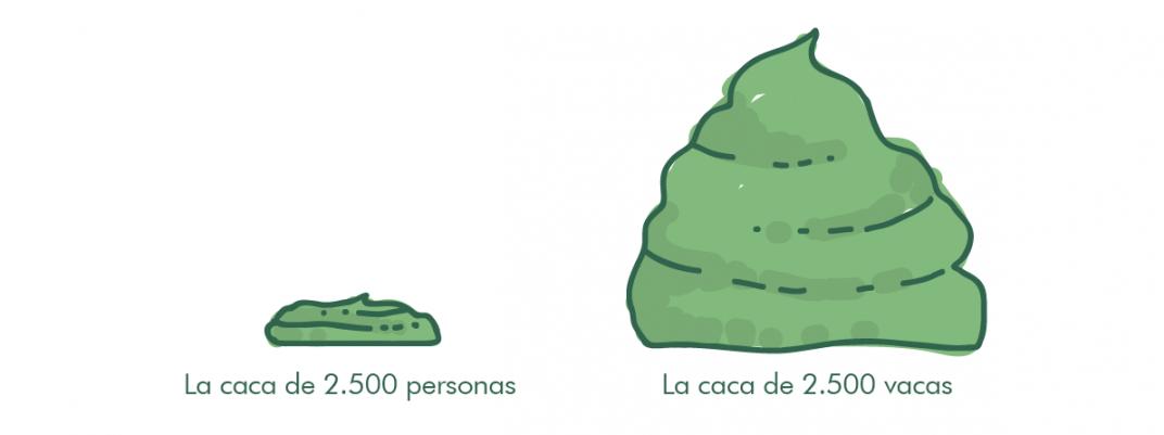 gráfico caca de vaca vs. caca de humano