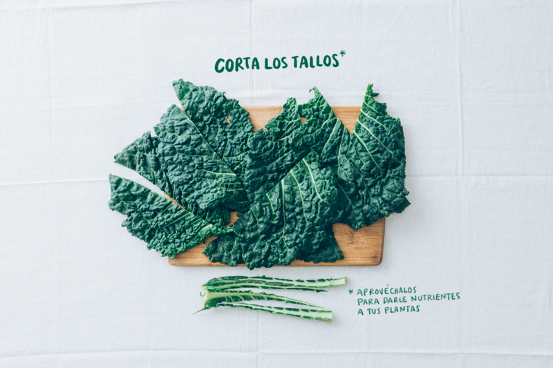 Chips-col-kale-3