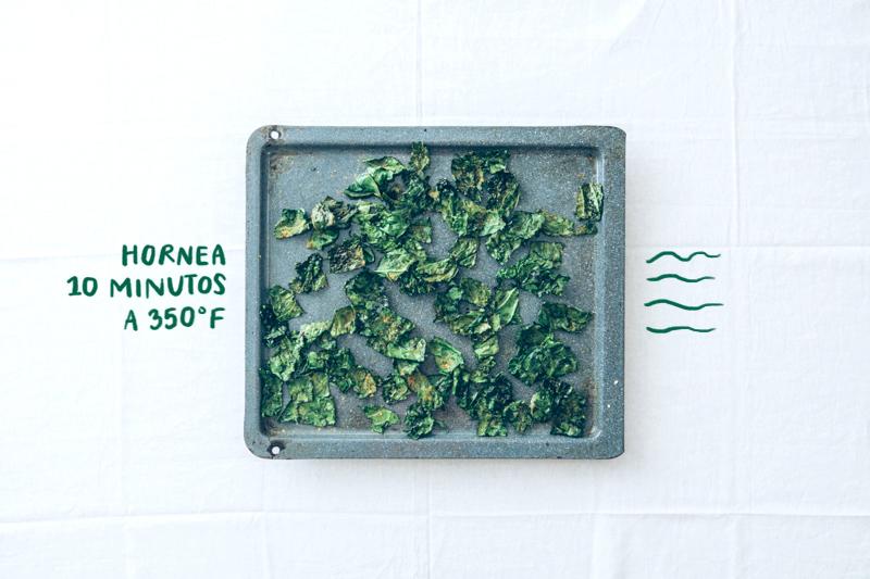 Chips de col rizada / kale