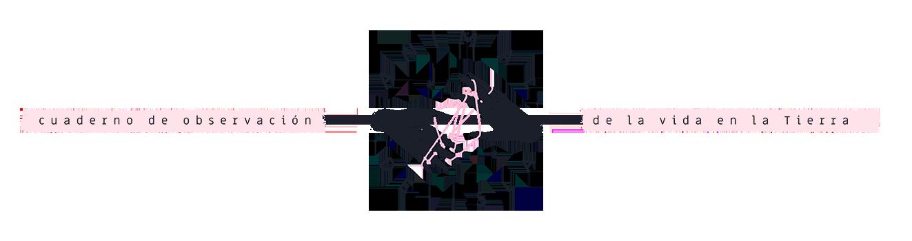 Animal de isla