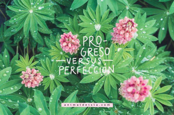 Progreso versus perfección
